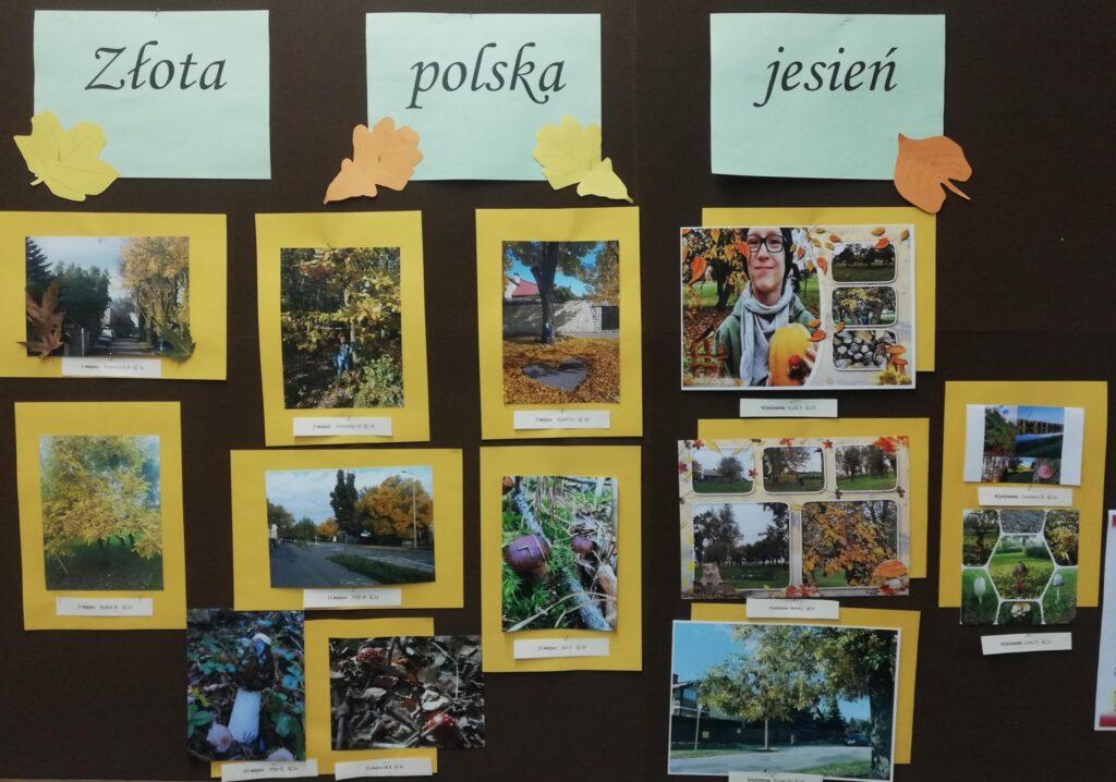 Rozstrzygniecie konkursu fotograficznego Złota Polska Jesień
